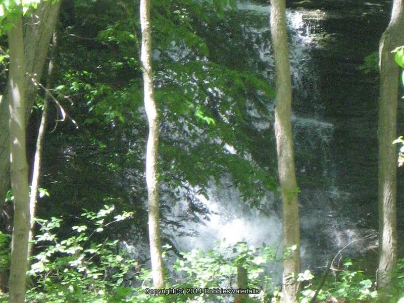 TRIPHAMMER TOMPKINS CENTRAL NY 5-24-2008_00002.JPG