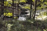 LOBDELL MILL FALLS ALBANY COUNTY EASTERN NEW YORK 8-17-2013_00002.JPG
