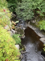 HANGING ROCK FALLS ULSTER COUNTY SOUTHERN NEW YORK 8-23-2014_00003.JPG
