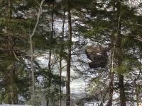 Krystal Falls Schenectady County Eastern New York 2-22-2014_00001.JPG