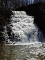 Holley Canal Falls Orleans County Western New York 4-12-2014_00009.JPG