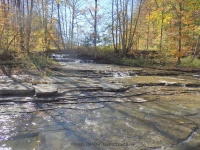 Gulf Creek Falls on 274C 10-11-2015_00010.JPG