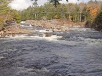 Powerline III Rapids Moose 10-17-2015_00003.JPG