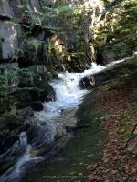 Lewis Eagle Section Beaver River falls on 1 9-20-2015_00014.JPG