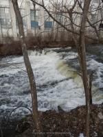 NORTH CHUCTANUNDA FALLS MONTGOMERY COUNTY EASTERN NEW YORK 1-14-2013_00006.JPG