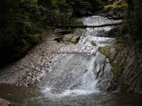 Roaring Run 2nd Bridge to Roaring Run Falls_00008.JPG