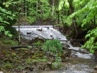 FOXES FALLS HERKIMER COUNTY CENTRAL NEW YORK 5-26-2013_00003.JPG